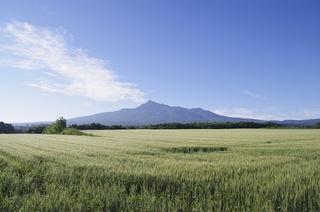 【1泊2食付】知床半島と斜里岳 パノラマビュープラン