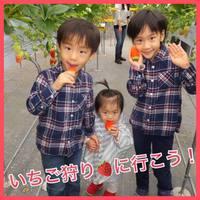 【季節限定】◆あま〜いイチゴ狩り食べ放題◆ 一泊2食付き!夕食は創作和食コース