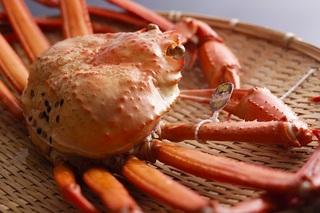 タグ付き香住ガニ+ノドグロ料理3種類!旬の2大食材が食べられる「春の紅白プラン」