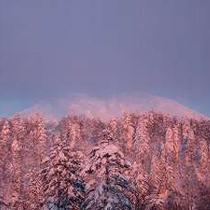 【素泊まり】北海道最高峰・旭岳の麓に佇む旭岳温泉へ!!手軽に源泉かけ流し天然温泉でのんびり♪