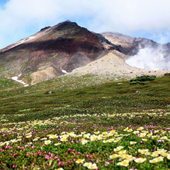 【1泊2食付・基本】北海道最高峰旭岳! 源泉かけ流し温泉と創作料理堪能♪