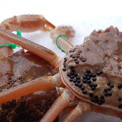 幻の蟹を食す!間人・網野(大善)蟹満喫!【竜宮コース】