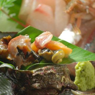 夏季限定!岩ガキ、あわび、サザエを食す!「夏の三大貝プラン」
