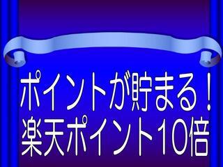 【楽天ポイント10倍】 ポイントアッププラン[Wi-Fi無料]
