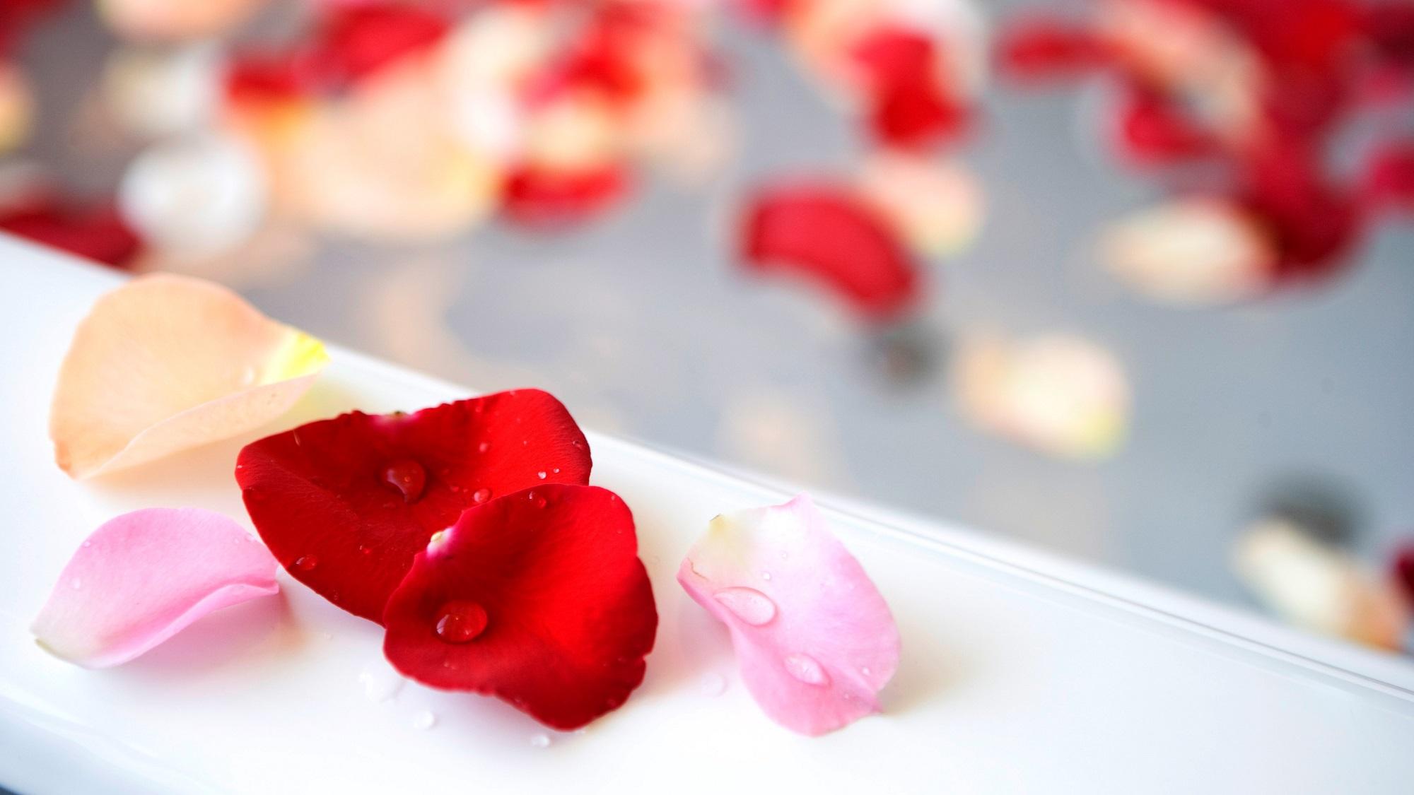 【ビューバスルームで花香る贅沢な時間を】Flowerful Bathtime Stay