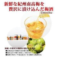 【春夏旅セール】★-★紀州の梅酒付きプラン★-★