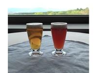 ◆クラフトビール2種類特典付き♪◆牛肉の鉄板焼き、かに、お寿司など豪華ディナーバイキング&温泉満喫♪