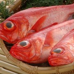 人気NO.1!!!【金目鯛のしゃぶしゃぶプラン】さらに金目鯛のお煮つけご用意
