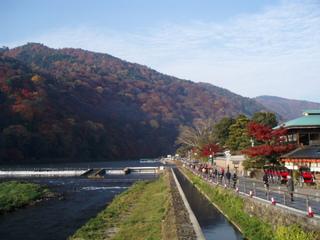 京都の旅を満喫 嵐山で至福のひとときを