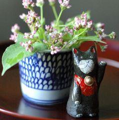 開運♪お土産にもどうぞ!!花季から陶製招き猫プレゼント☆