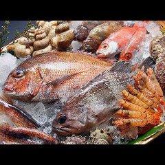 【温泉宿】魚市場直仕入れ☆海鮮舟盛りプラン【1泊2食】