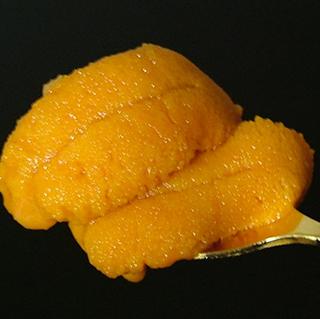 ◆【きた北海道】≪生ウニ付≫ウニウニ!獲れたてのウニを召し上がれ♪スタンダードプラン【夕朝食付】