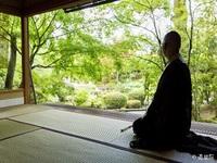 【1日1組限定・プライベートだから安心】妙心寺 退蔵院特別拝観プラン