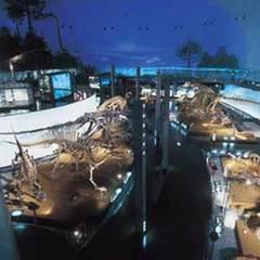 【入場チケット付】世界屈指の恐竜ラボ!福井県立恐竜博物館へようこそプラン