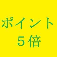 【カード決済限定】ポイント5倍プラン(食事なし)