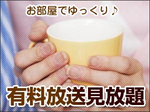 長期連泊応援!【無料P完備!】5連泊以上でVOD見放題&朝食付!