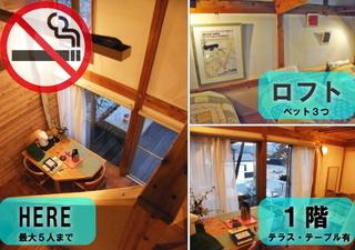 ★猫ちゃん訪問付き♪和洋室・1階9畳+2階ロフトベット3つ☆