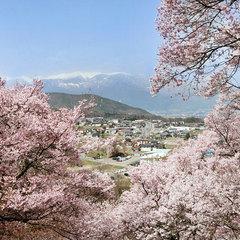 【夜桜無料送迎付】光前寺の夜桜・幻想ライトアップ観賞プラン