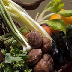 【自慢の逸品】 京野菜をたっぷりと!しゃぶしゃぶ付懐石料理プラン◇【部屋食】