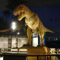 【家族旅行】世界三大恐竜博物館の1つ「福井県立恐竜博物館」常設展観覧付一泊二食プラン☆彡