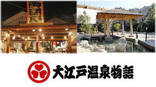 【大江戸温泉物語入館引換券付】お江戸へタイムスリップ♪