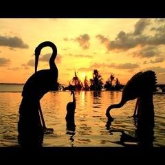 【南国ロングバケーション】碧い海に魅せられて・・・ 暮らす様に過ごす10日間  滞在中4回朝食付き!