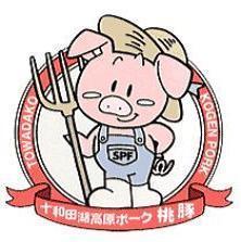 【ご当地グルメ】【十和田湖高原ポーク】桃豚しょうが焼き定食プラン〜秋田のブランド豚〜 朝食無料♪