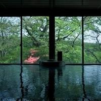 鹿の湯源泉掛け流しの宿 松川屋 那須高原ホテル