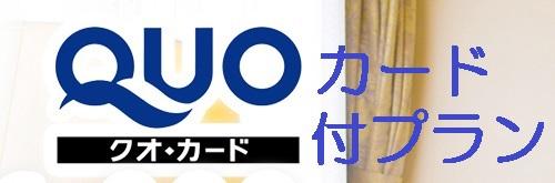 Quo付プラン