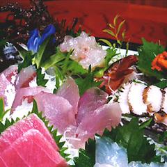 もっとお刺身が食べた〜い!真鶴港直送彡≪旬の海鮮刺身☆皿盛り≫追加!彡【ゆったりお部屋食】