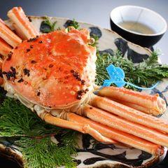 【活蟹】津居山蟹コース(おひとり1.5杯)◆希少ブランド地蟹「津居山かに」を味わう上級蟹づくし