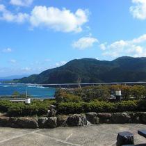 【当館スタンダード☆彡地魚しゃぶしゃぶプラン】朝どれ地魚と天然温泉を満喫♪