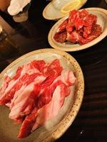 【朝夕2食セット】 札幌でしか味わえない『63ジンギスカン』で使える5000円お食事券付/人数分
