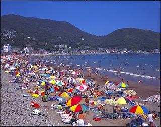 夏だ!海だ!伊東オレンジビーチ海水浴プラン(夕朝食付)