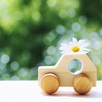 【2020年度スタートキャンペーン】GO!GO!春のドライブプラン≪朝食無料≫