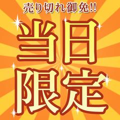 10周年特別企画☆〜第2弾〜当日限定!シングル1室限定! 3,000円ポッキリ(素泊まり)プラン