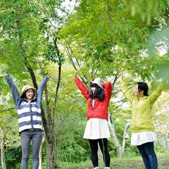 【45日前早割】最大20%OFF!★桜の季節も早期予約でお得な夕朝食付プラン【さき楽】