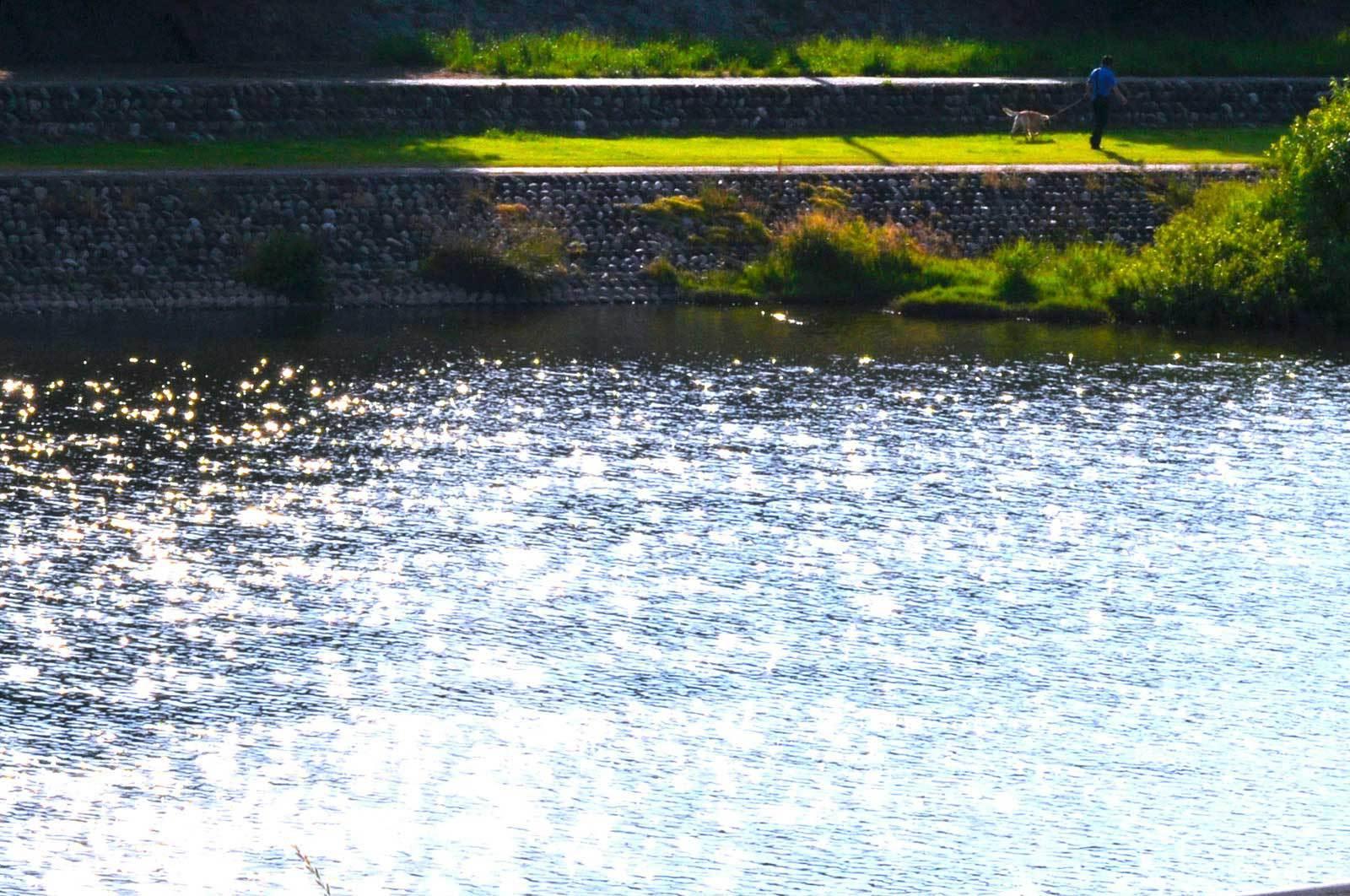 選べて嬉しい・・夕食 【和(なごみ) 会席 】&犀川を眺めながら・・自慢の朝食を・・・♪