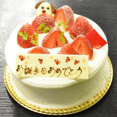 【ポイント2倍】☆お誕生日おめでとう☆  日頃の感謝を〜♪