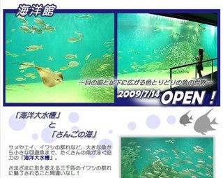 イルカやペンギンが待っています!【越前松島水族館】入場券付プラン!!