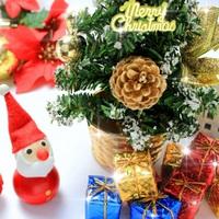 【X'mas期間限定】温泉で過ごす★クリスマスディナープラン♪