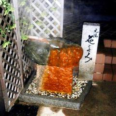 【ちょっと豪華】口コミで人気のお料理をグレードUP★ズワイ蟹半身付で13品(1泊2食付C)