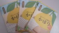 ◆【今が旬】晩白柚の香りの入浴剤付プラン◆