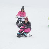 【池の平スノーパーク リフト券付き】スキー・スノボ1泊2食バイキングプラン