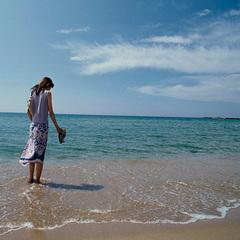 【スタンダードフロア】【爽夏】海の色・波の音に心和らぐ夏の丹後◇夏の創作会席[ZF001HX]
