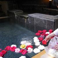 平日限定【女子旅プラン】 女子だけで温泉旅を愉しもう♪ 嬉しい特典付き  【美肌の湯】