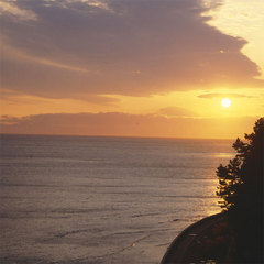 ★冬の味覚の王様★上質な旬を味わう!≪日間賀島のふぐ+地場産新鮮たこ≫