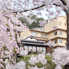 桜の見える客室確約・春の風雅を愛でる期間限定プラン