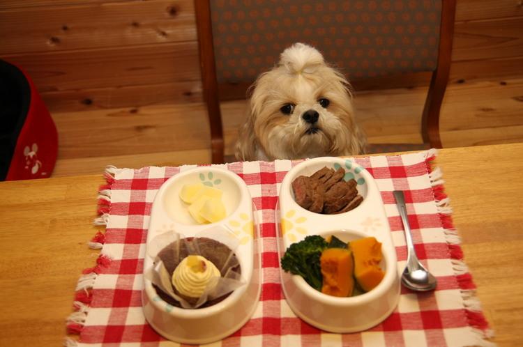 ワンちゃん用お食事もご用意出来ます