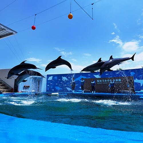 ◆仙台うみの杜水族館で楽しもう◆入場券引換券付◆素泊り◆無料Wi-Fi対応